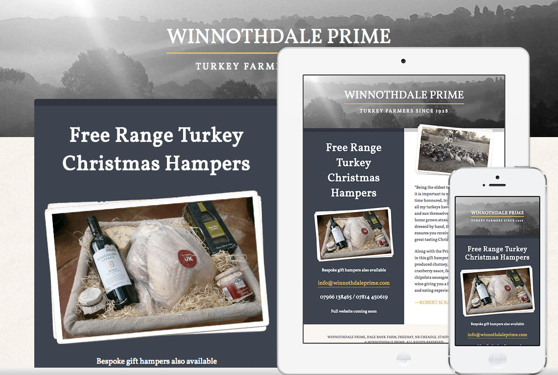 Responsive one page website design - Winnothdale Prime