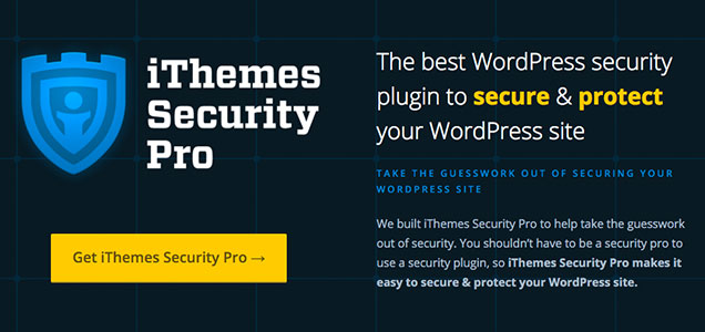 iThemes WordPress Website Security Costs