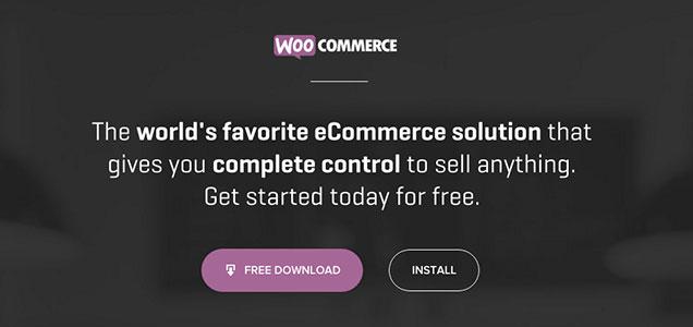 Woocommerce WordPress website costs