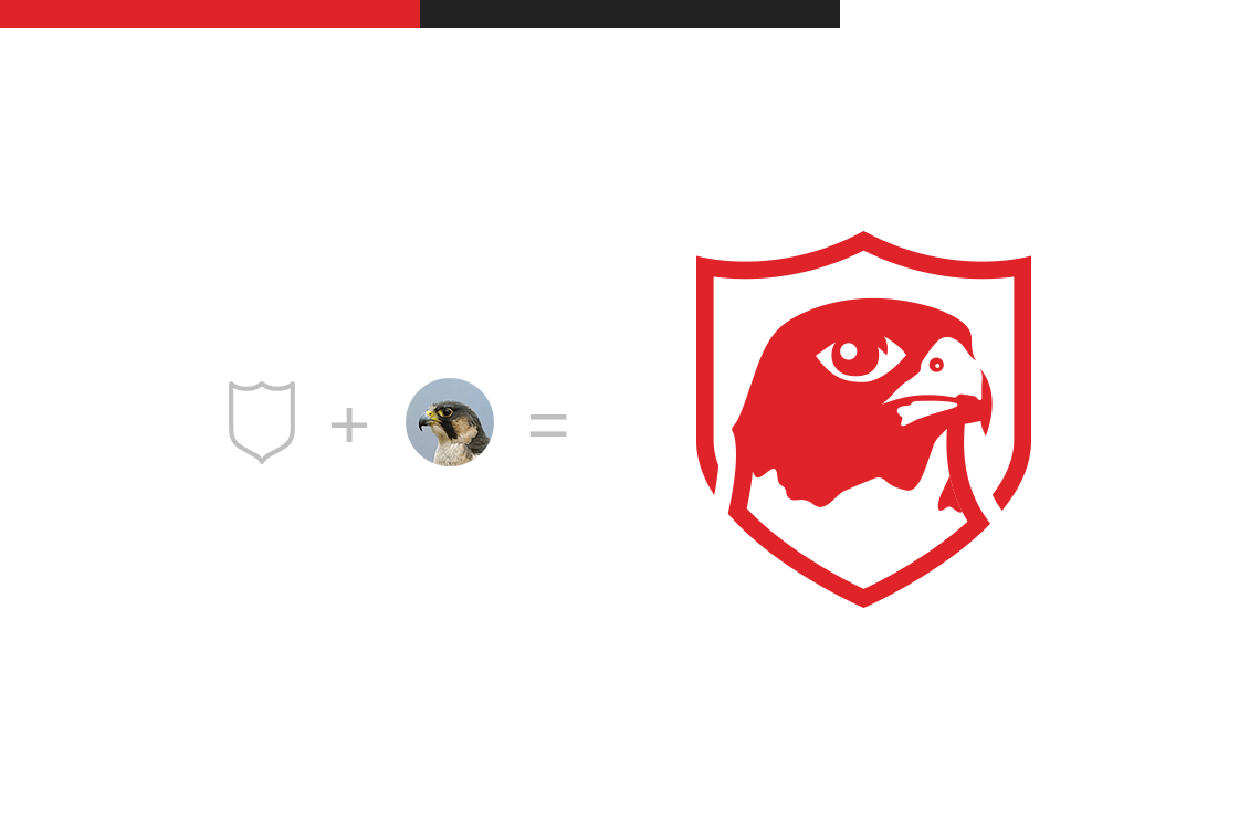 John Dowling Falconry Academy logo design logomark